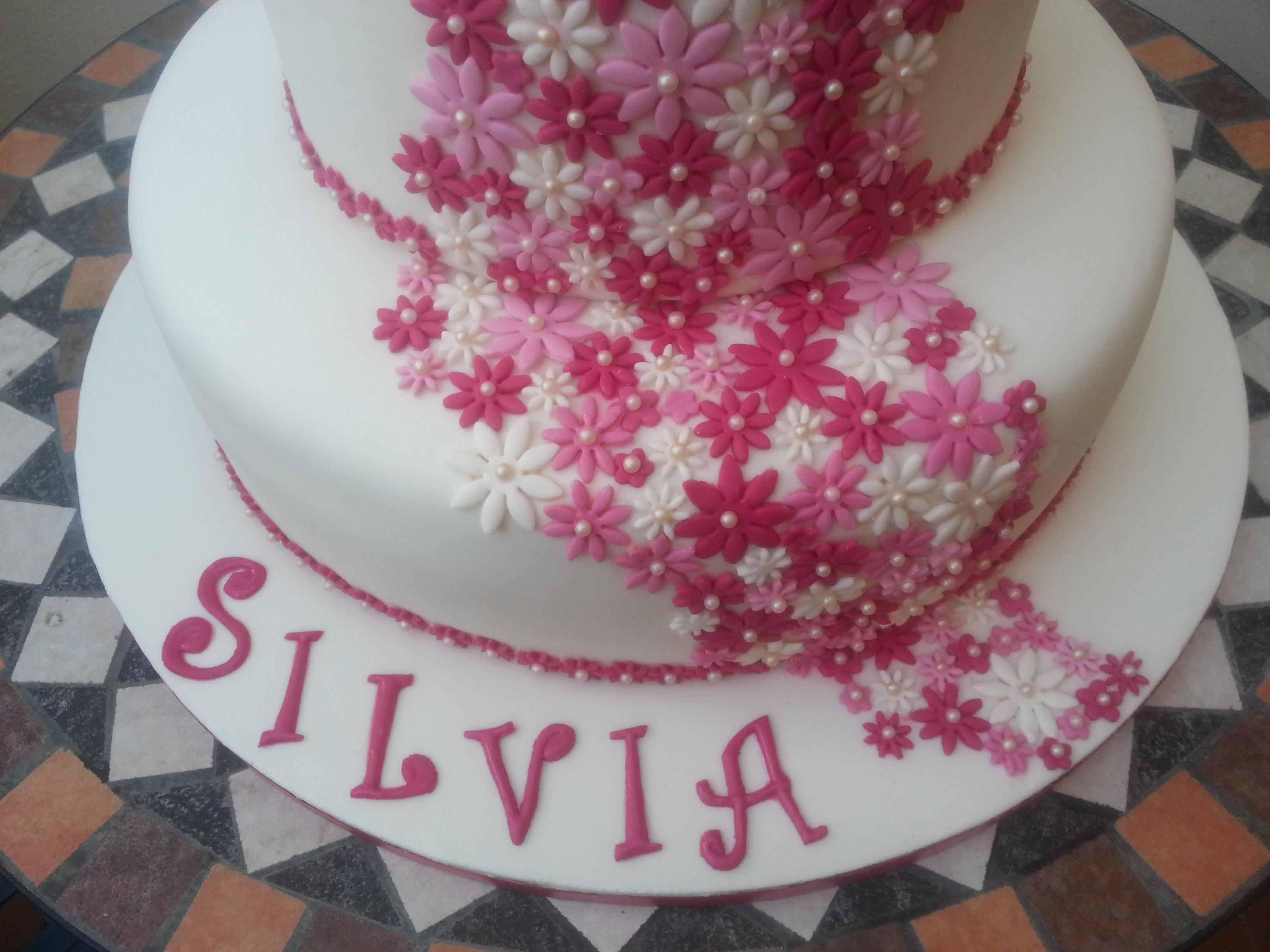 Tutto sulle torte decorate cuginette sul g teau for Piccoli piani colonica con foto