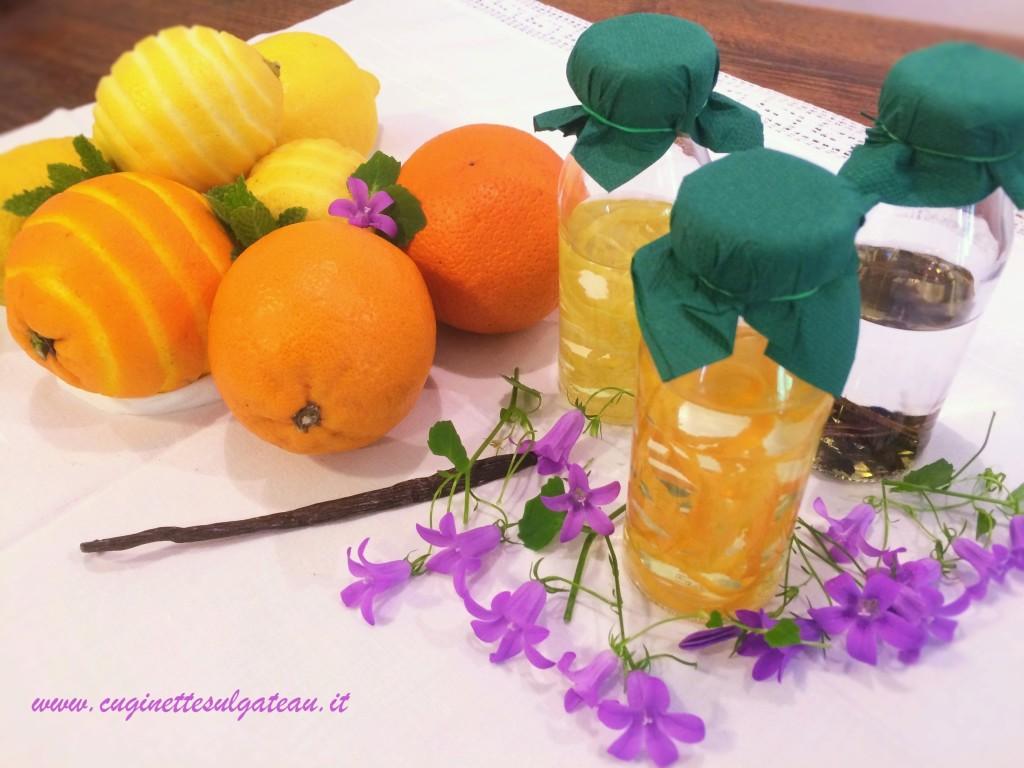 estratti aromatici - vaniglia - limone - arancia - menta
